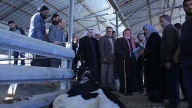 Photo of التشريعي يثني على قرار الزراعة في إتلاف الأبقار ويدعم إجراءاتها الأخيرة