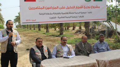 Photo of الرحمة والزراعة توزعان أشجار النخيل على المزارعين المتضررين