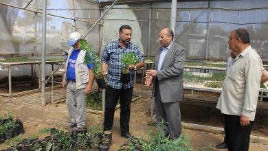 Photo of القدرة يتفقد مشاتل وزارة الزراعة
