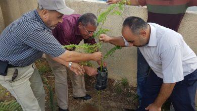 Photo of حملة تزيين وتشجير حديقة مديرية التربية والتعليم شمال غزة