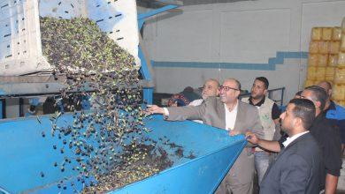 Photo of جولة تفقدية لمعاصر الزيتون في محافظات القطاع