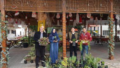 Photo of الزراعة تشجر حديقة جمعية الشبان المسيحية باشجار الزينة والاشتال الحولية