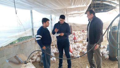 Photo of لاجراءات الوقاية .. الزراعة تنفذ جولة ميدانية على مربي الدواجن