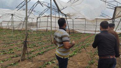 Photo of بالصور..زراعة خانيونس تتفقد مزارعى الدفيئات المتضررة