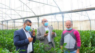 Photo of وكيل الزراعة يتفقد مزارعي الخضار والورود جنوب القطاع