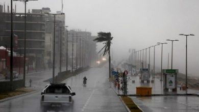 Photo of أعلي هطول سجل في مدينة بيت لاهيا .. الزراعة : الأمطار التي هطلت على القطاع بلغت 17.4 مليون متر مكعب