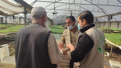 Photo of الزراعة تواصل زياراتها الميدانية لمتابعة عمل المشاتل
