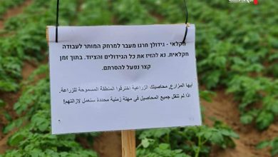 Photo of الزراعة تندد باستهداف الاحتلال لطواقمها والصحفيين والمزارعين شرق خان يونس