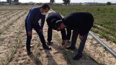Photo of زراعة خانيونس : جولات جديدة على اراضي المزارعين لتقديم الدعم الفني