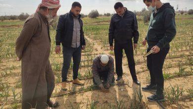 Photo of زراعة رفح تتفقد مزارعي الخضار المكشوفة في المناطق الشرقية للمحافظة