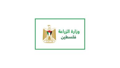 Photo of اعلان هام للتجار مستوردي ومصدري الخضار والفواكه