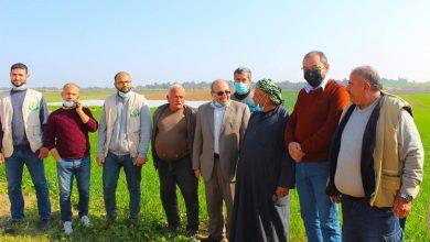 Photo of بالصور..وكيل الزراعة يتفقد مزارعي مدينة غزة