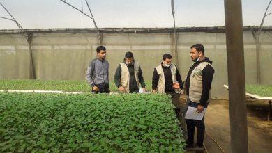 Photo of بالصور..الزراعة تنفذ جولة رقابية على مشاتل رفح