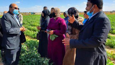 Photo of بالصور…وكيل الزراعة يتفقد مزارعي ومربي الدواجن بمحافظة خانيونس