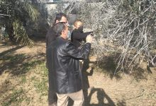 Photo of زراعة خانيونس توجه مزارعي الزيتون للعمل ضمن برنامج المكافحة المتكاملة