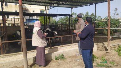 Photo of الخدمات البيطرية تنظم جولة ارشادية على مزارع الابقار والأغنام بخانيونس