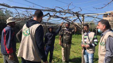 "Photo of بالصور..زراعة غزة تنفذ يوم حقلي في منطقة""الشيخ عجلين"""