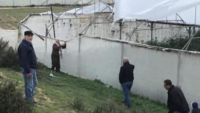 Photo of بالصور..زراعة الوسطى تستجيب لنداءات المزارعين المتضررين من المنخفض الجوي