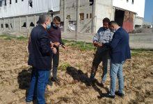 Photo of زراعة محافظة غزة تتظم جولة ميدانية على مزارعي البطاطس