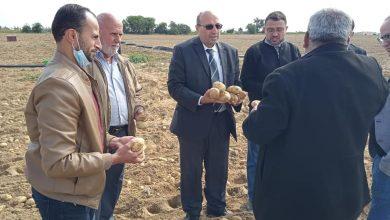 Photo of بمشاركة وكيل الوزارة..زراعة خانيونس تنظم زيارات ميدانية على مزارعي المناطق الشرقة