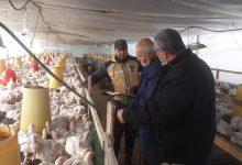 Photo of زراعة الوسطى تنفذ جولة ميدانية على مزارع الدجاج البياض