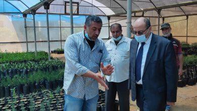 Photo of وكيل الزراعة يشيد بتطويرمشتل الشاطئ التابع للوزارة