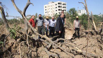 Photo of بالصور..الزراعة تتفقد آثار العدوان الإسرائيلي شرق مدينة غزة