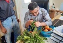 Photo of زراعة خانيونس تتابع المشاكل و الصعوبات التي تواجه مزارعي المحافظة