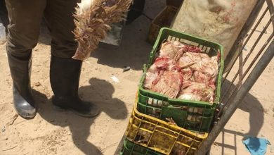 Photo of بيطرة غزة تنفذ جولة رقابية على الدجاج الحي المعروض في الأسواق