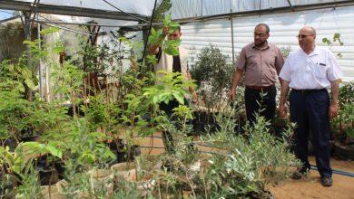"""Photo of بالصور..وكيل الزراعة يطلع على سير العمل في مشروع تخضير فلسطين """"2021"""""""