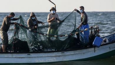 """Photo of تقرير: الصيادين.. بين تقليص مساحة الصيد و ضياع موسم """"السردين"""""""