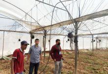 Photo of زراعة رفح و جمعية أصدقاء البيئة الفلسطينية تنفذان جولات ميدانية على مزارعي المحافظة