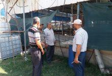 Photo of زراعة الوسطى تقدم الإرشادات  و التدابير الفنية اللازمة في مزارع الدجاج اللاحم