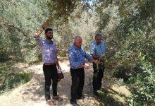 Photo of بالصور..زراعة الوسطى تتفقد مزارعي الزيتون والنخيل
