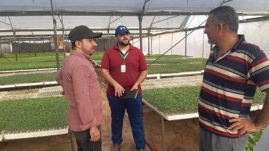 Photo of زراعة خان يونس تتفقد مشتال الخضار بالمحافظة