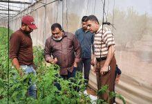 Photo of زراعة غزة تتفقد مزارعي الدفيئات الزراعية في الشجاعية والزيتون